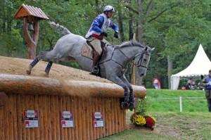 règlement jeunes chevaux SHF