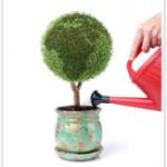 BIOTOP - développement durable